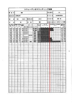 地盤調査判定・報告書-5.jpg